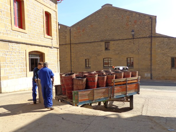 Workers unloading grapes at Lopez de Heredia