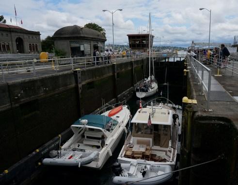 Pleasure boats heading back to Salmon Bay