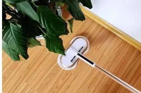 清水拖地等于白拖,水里加点它,地板干净不沾灰