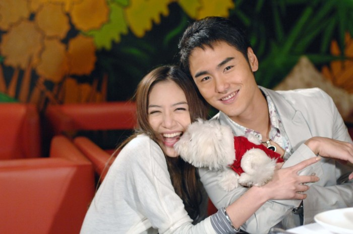 台灣偶像劇十大霸氣總裁,簡直就是追劇少女的快樂日常