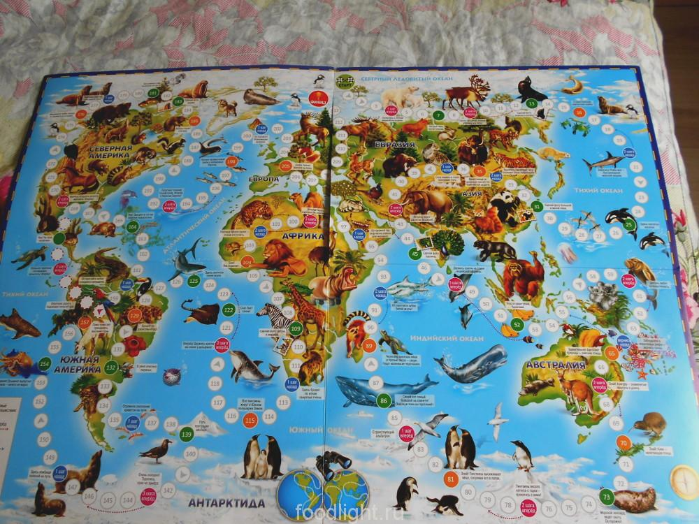 Игра-ходилка Животный мир Земли