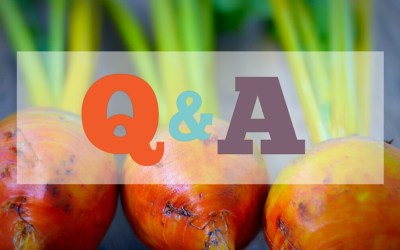 Nutrition Q & A | Protein and Protein Supplements