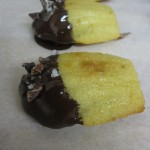 Trip to the Seaside {Recipe – Sea Salt and Cocoa Nib Madeleines}