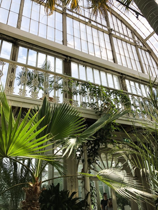 Inside the Palm House at Gothenburg, 10 Things to See and do in Gothenburg, Sweden - www.foodnerd4life.com