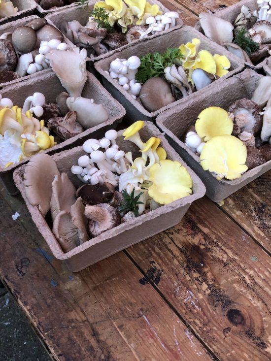 Mushrooms from Five Acre Farm, www.foodnerd4life.com