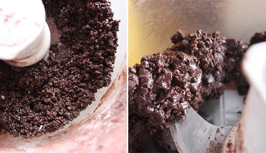 Left: After adding cocoa and sugar and pulsing a couple of times; Right: Hazelnuts, cocoa and sugar, well incorporated (you can see the oil from the nuts shine through)