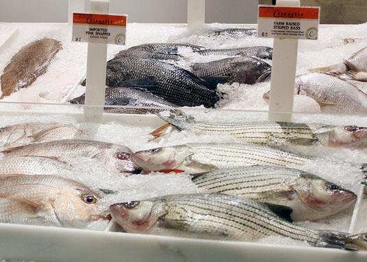 Citarella - Fresh Fish