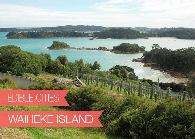 {Edible Cities} Waiheke Island, New Zealand, with Nikki from Art and Lemons