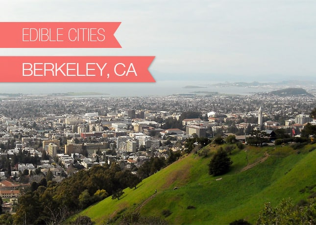 {Edible Cities} Berkeley, California, with Stephanie from The Culinary Life