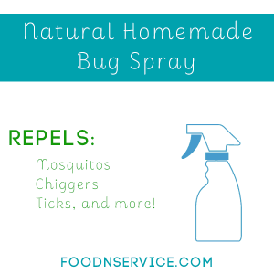 Natural Homemade Bug Spray