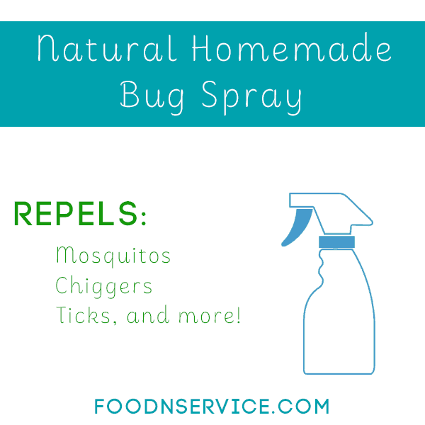 all natural homemade bug spray