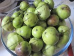 Wild and windfall apples