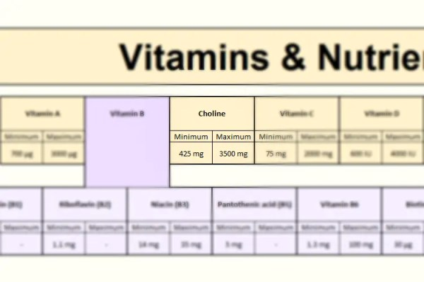 Choline in Focus - Vitamins section of the FooDosage Nutrition Calculator results page