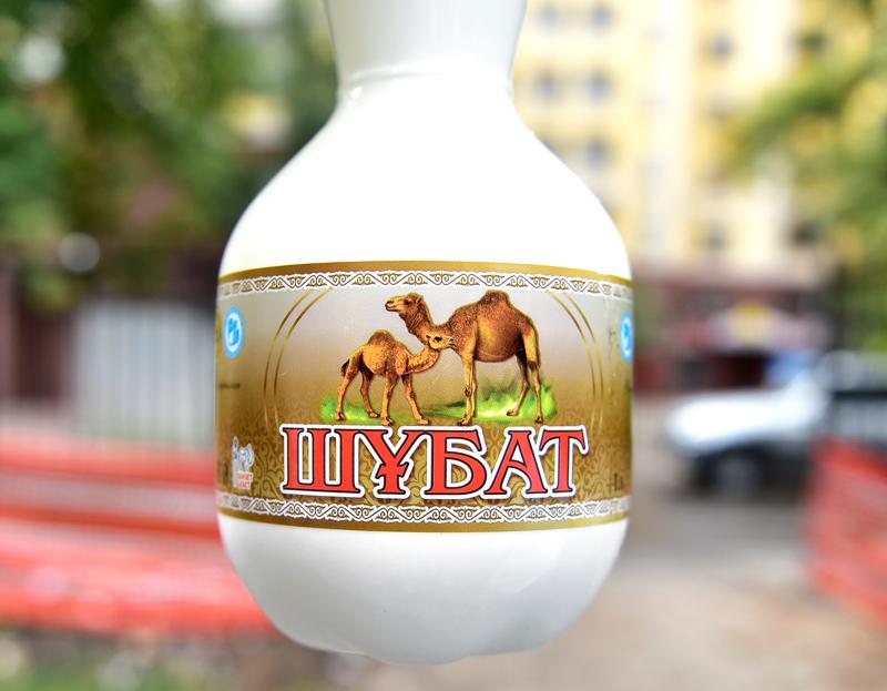 Shubat, Fermented Camel's Milk