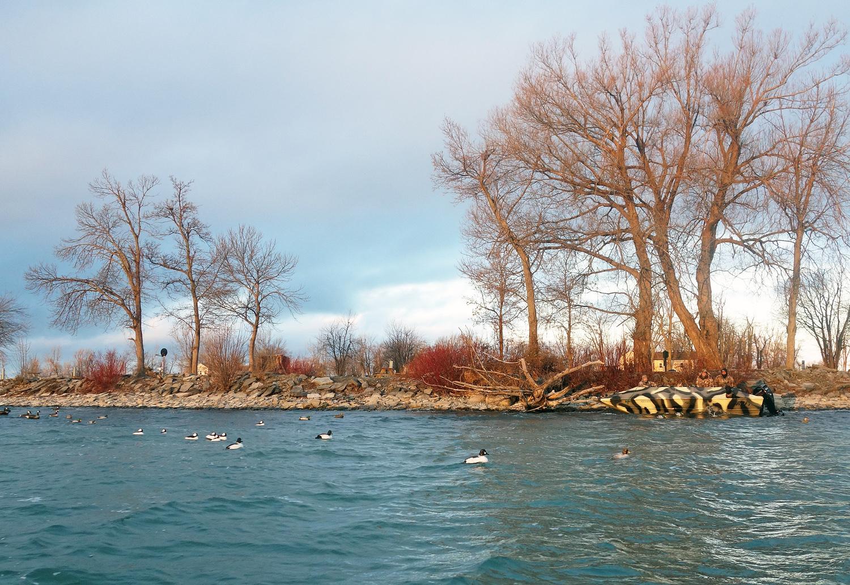 Lake Ontario - Duck Hunting