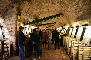 Moravia - Valtice - Salon of Czech Republic Wines