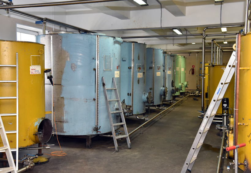 Petrovsky Liquor Factory - Maceration Tanks