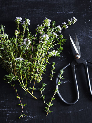 Thyme. Cooking with Salt. Recipes, foodstyling, styling & photography by Manja Wachsmuth. Recipes for MAD&venner.