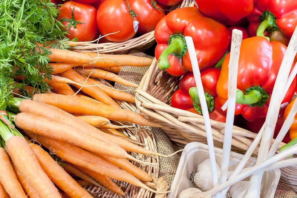 farm market photoshoot vancouver