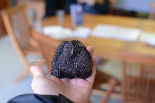 Blue Frog Truffles black truffle