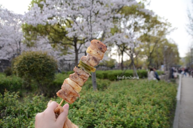 Osaka Japan street food pork skewer