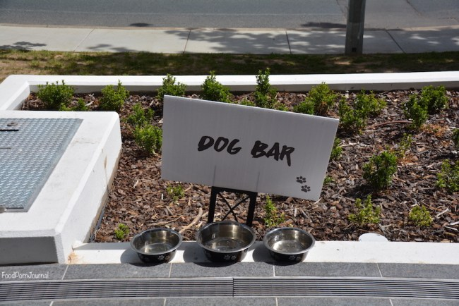 teddy-pickers-campbell-dog-bar