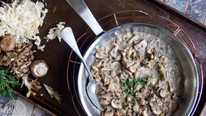 Vegan paddenstoelenragout