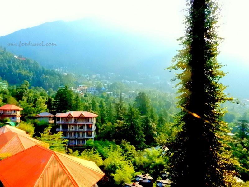 One Night at Dharamkot