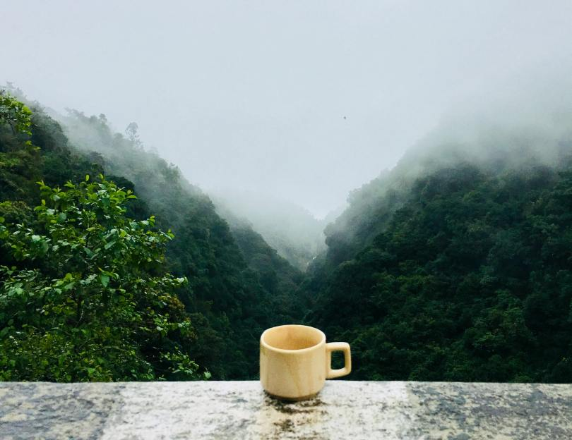 what to eat during monsoon