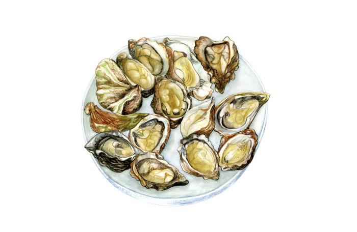 Oysters (2)