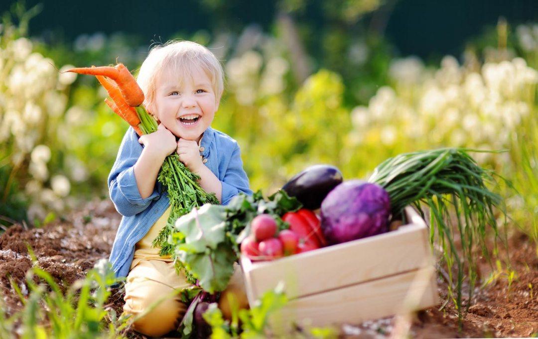 快樂的孩子拿著胡蘿蔔旁邊的蔬菜盒