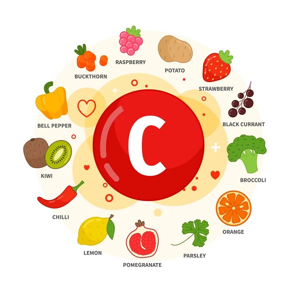 信息圖表維生素C食品