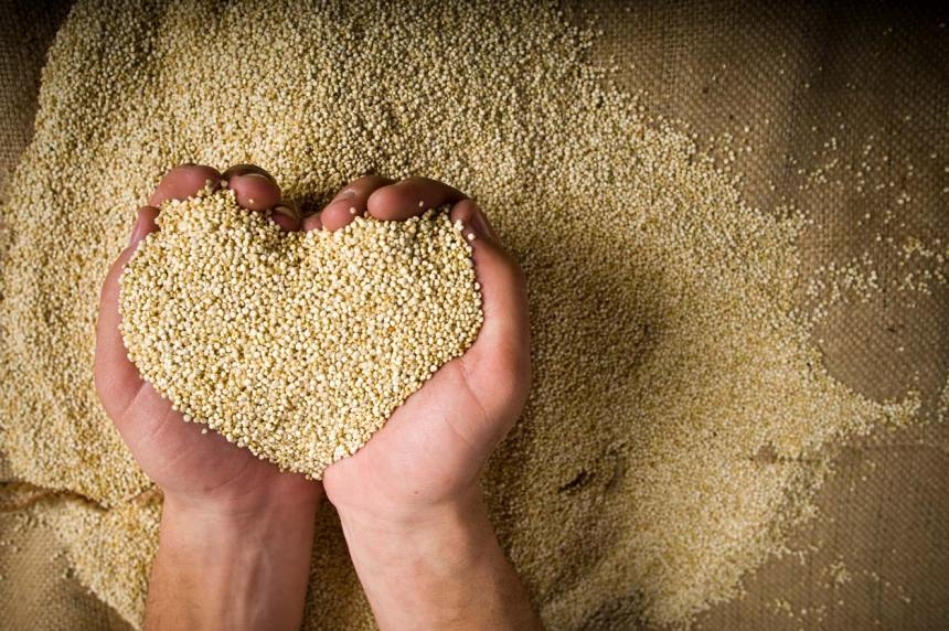 hands in heart shape holding quinoa