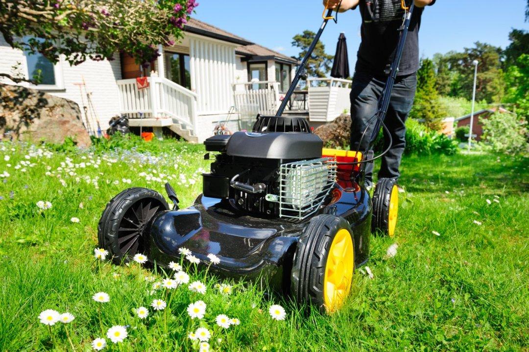 男子修剪非常綠色的草坪