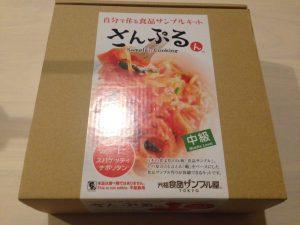 foodsample10