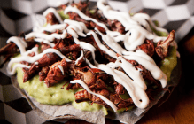 crickets-on-blue-corn-tostada
