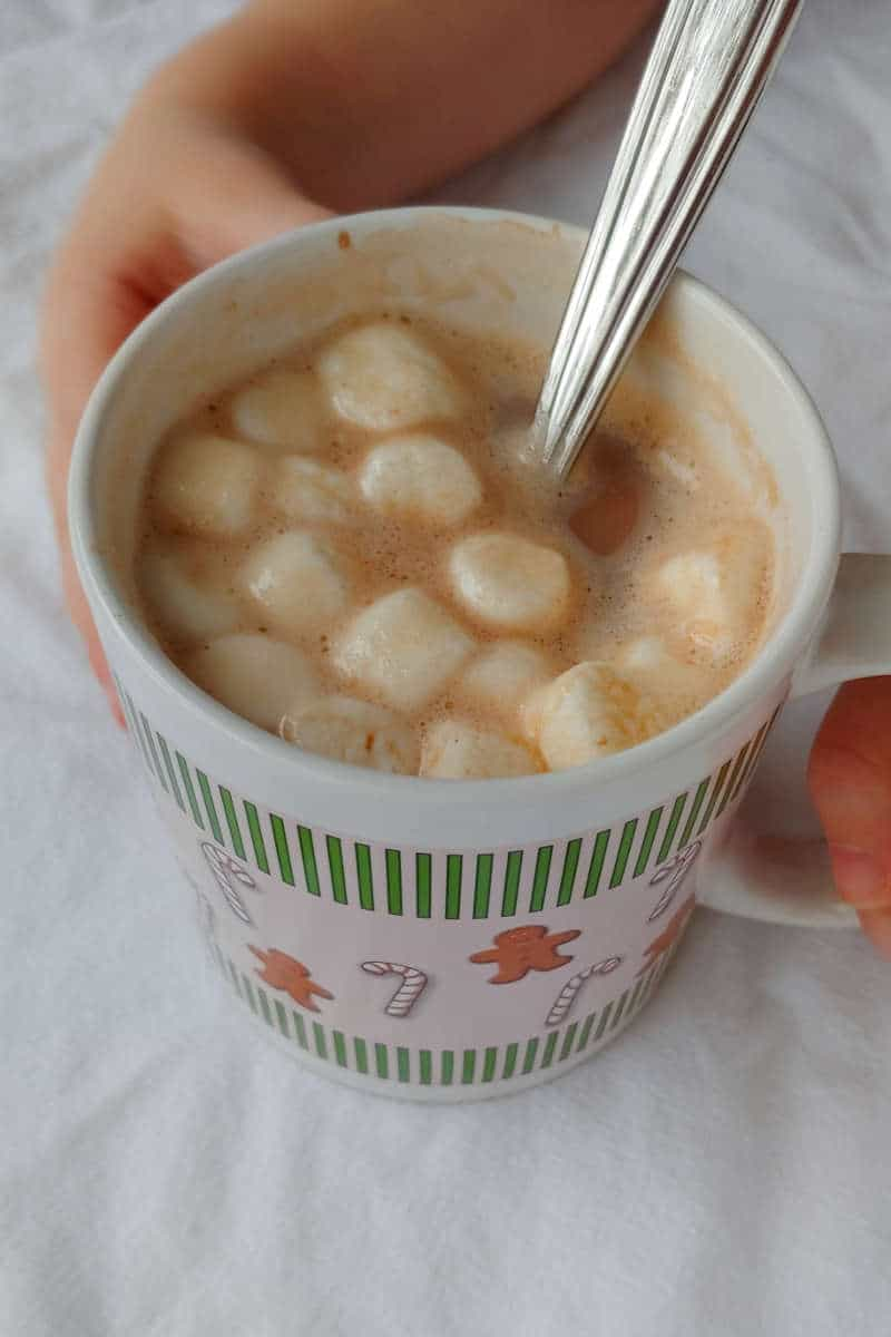 hands holding a mug of alton brown's hot cocoa mix