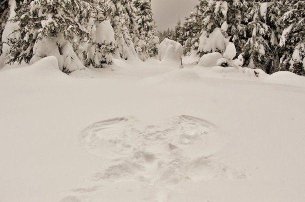 Schnee-Engel, Wildseehochmoor