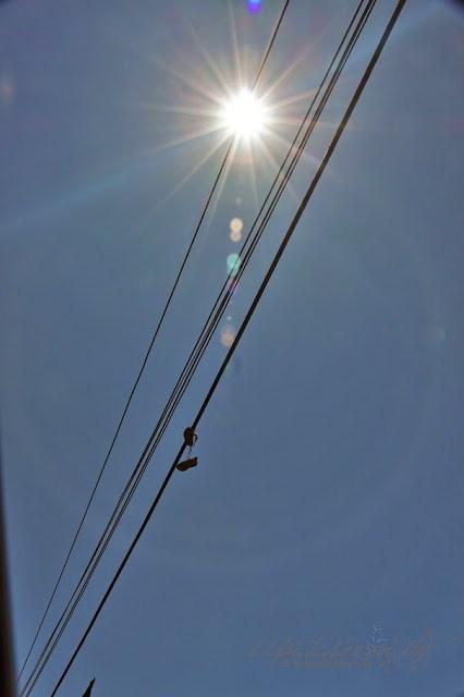 Sneakers, Kuscheltiere in LA wird alles über die Stromleitungen geworfen