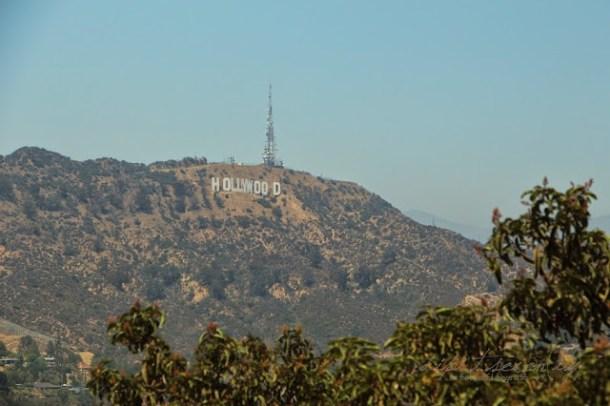 Aussichtspunkt Hollywood Sign