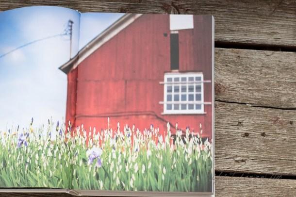 Frühling im Staat New York - Mein New York Kochbuch