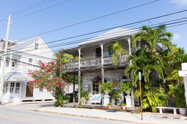 Key West ohne Auto - dipitontour