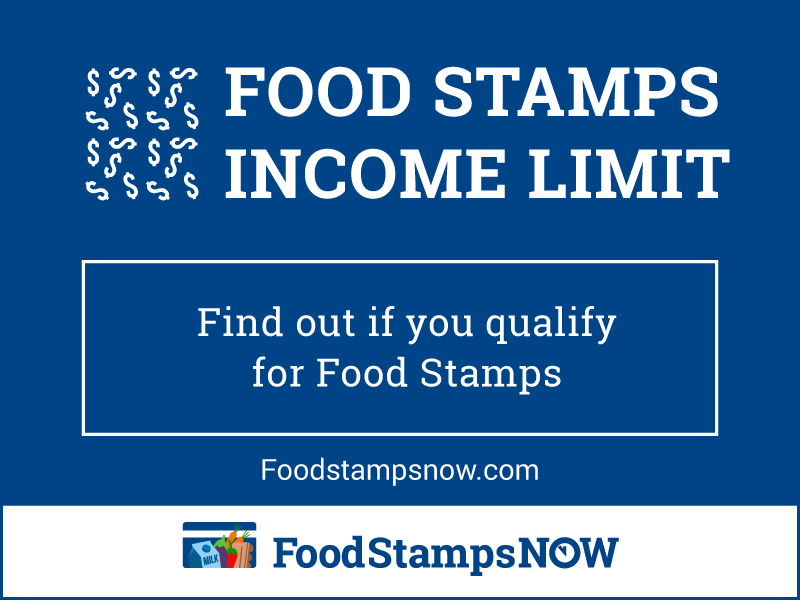Food Stamps Income Limit 2019 Food Stamps Now