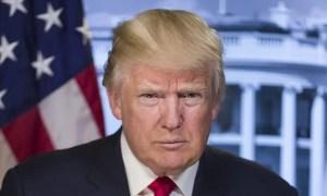 """Donald Trump Food Stamps Video"""
