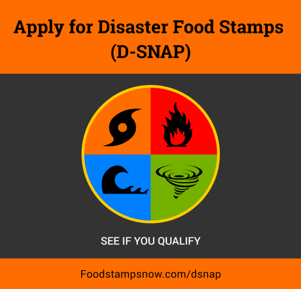 """How to apply for disaster food stamps online"""