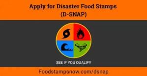 """Disaster Food Stamps in North Carolina"""