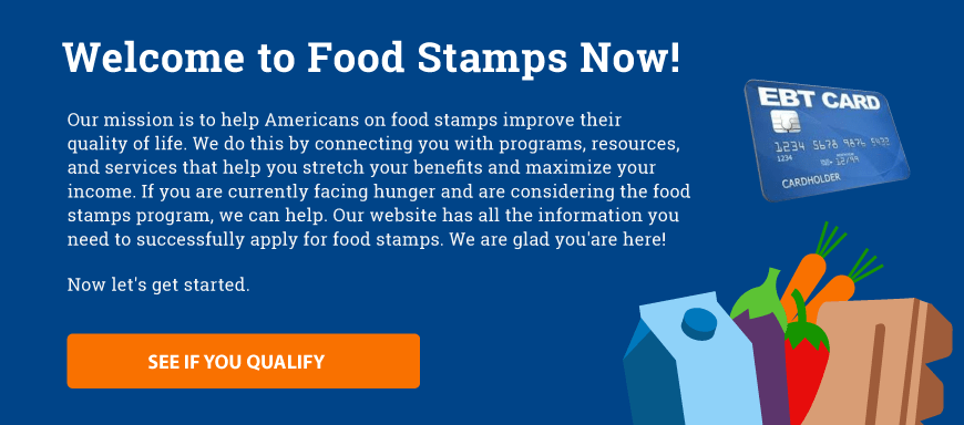 Home - Food Stamps Now