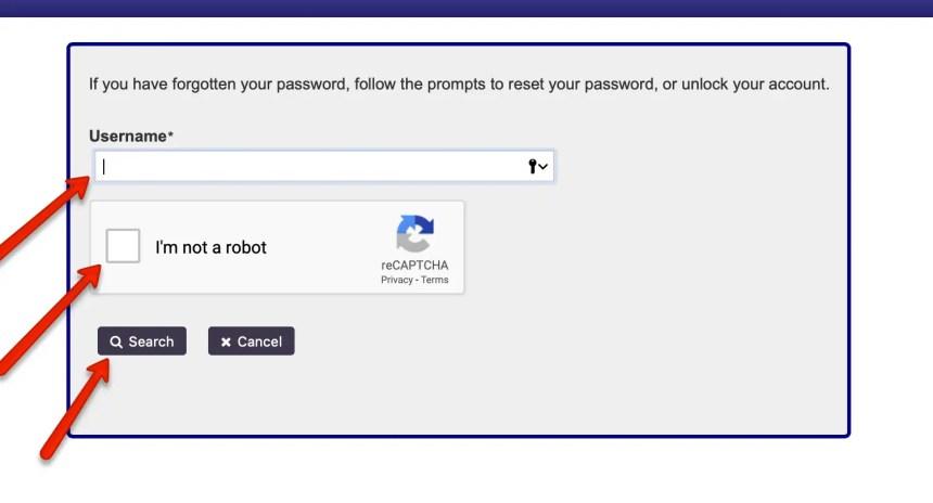 EPass NC Gov Password Reset 2