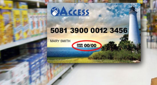 Florida EBT Card Balance Check
