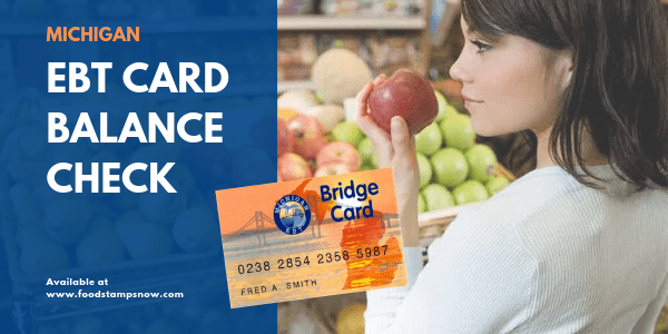 """Michigan EBT Card Balance Check"""